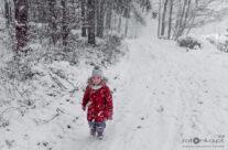 Zima 20 – luty 2021