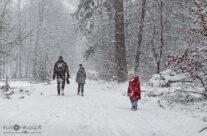 Zima 18 – luty 2021