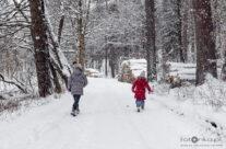 Zima 17 – luty 2021